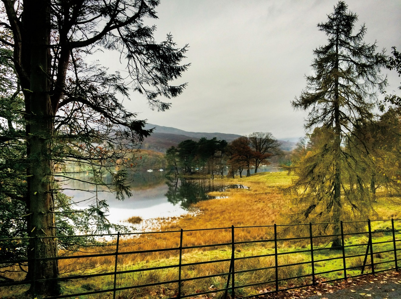 Autumn falls on Coniston East Shore Road